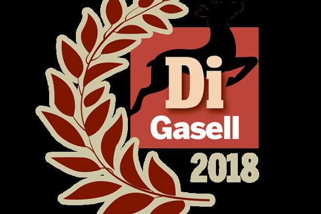 Di Gasell Gasellvinnare 2018
